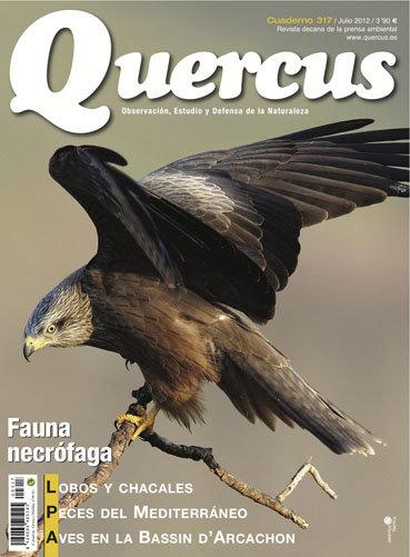 Portada Quercus nº 317 / Julio 2012