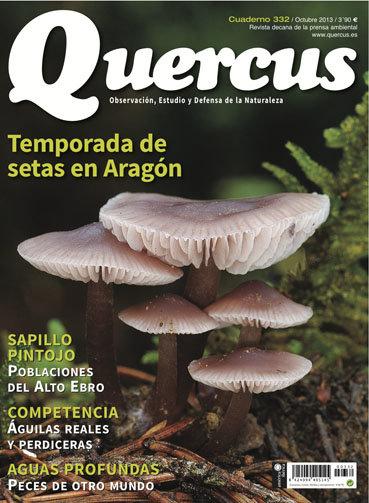 Portada Quercus nº 332 / Octubre 2013