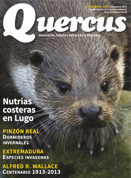 Portada Quercus nº 333 / Noviembre 2013