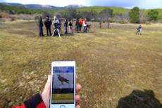 Un aficionado utiliza la app de las aves de España durante una salida ornitológica (foto: SEO/BirdLife).