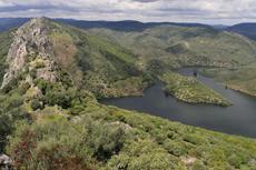 Tramo embalsado del río Tajo a su paso por el Parque Nacional de Monfragüe (Cáceres), en el punto en el que recibe las aguas del arroyo de Barbaón (foto: Juan Pablo Prieto).