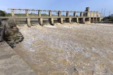 La presa de Alcalá del Río es el principal obstáculo que tienen las angulas para remontar el río Guadalquivir (foto: Jorge Sierra / WWF España).