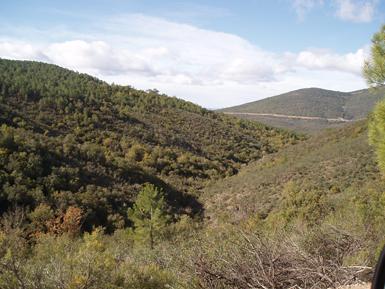 """""""Navas de Don Diego"""", en el término municipal de Los Navalucillos (Toledo), fue uno de los Refugios de Fauna descatalogados como tales por la Junta de Castilla-La Mancha (foto: Ecologistas en Acción)."""