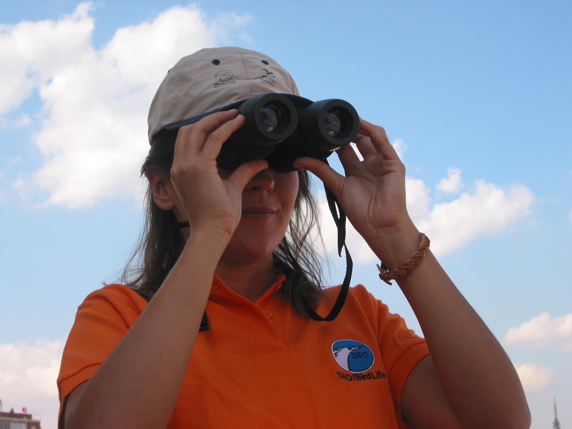 Los ornitólogos llenarán el corazón de Madrid