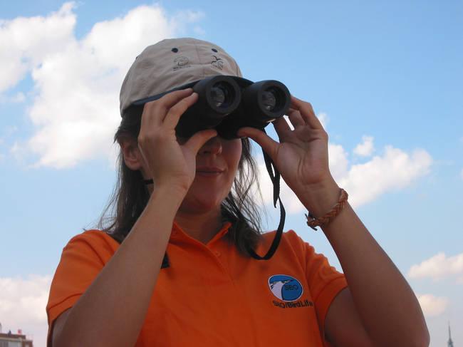 Una ornitóloga observa aves con sus binoculares (foto: SEO/BirdLife).
