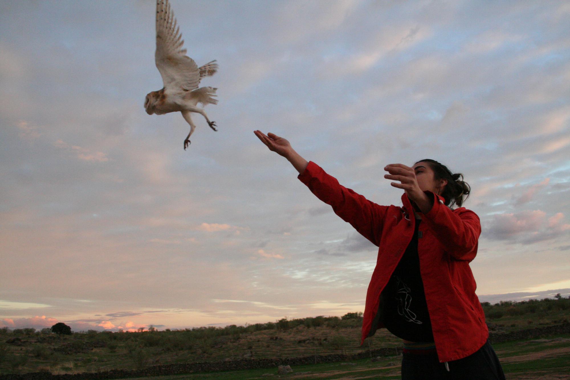 Centros de recuperación de fauna: hagamos historia