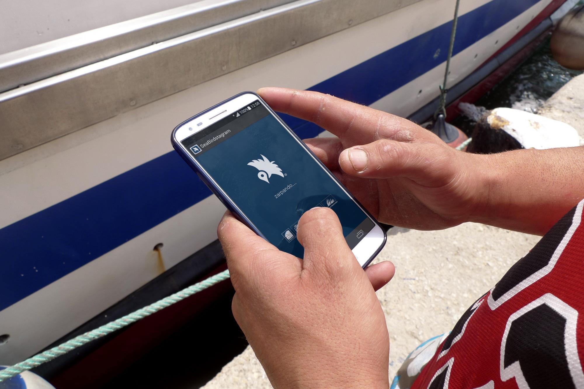 SeaBirdstagram: la app científica donde los pescadores cuentan