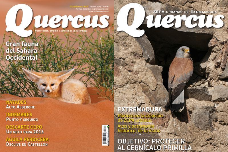 Portada Quercus nº 347 / Enero 2015