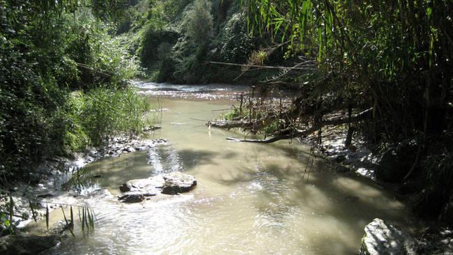El Llobretat, uno de los ríos donde se ha realizado el estudio sobre piretroides, a su paso por la comarca de Anoia (Barcelona). Foto: IDAEA.