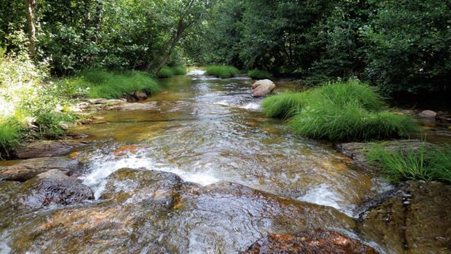 Vista del río Negro, en la provincia de Zamora, cauce sobre el que gravita la amenaza de la captación de agua. (foto: Javier Morales).