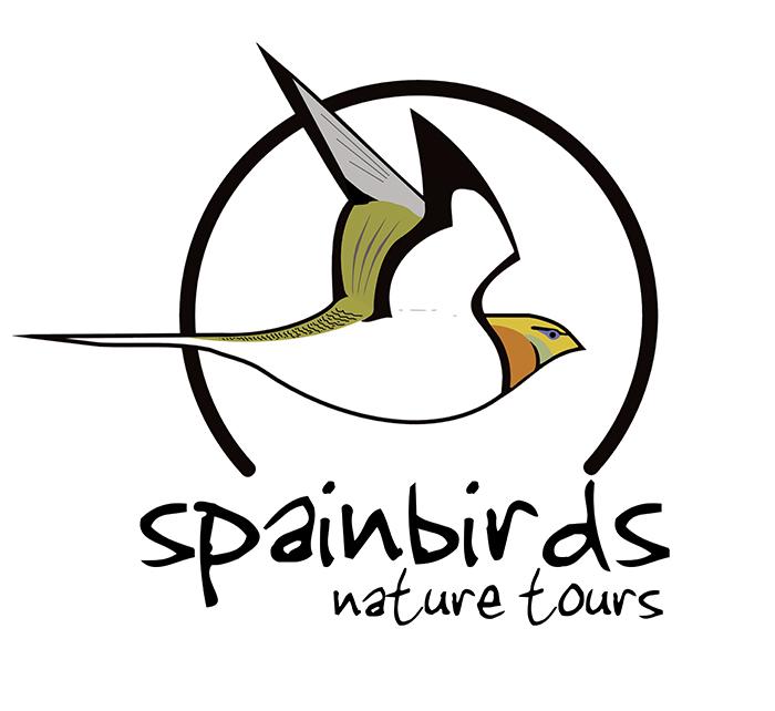 Viaje ornitológico al Estrecho de Gibraltar