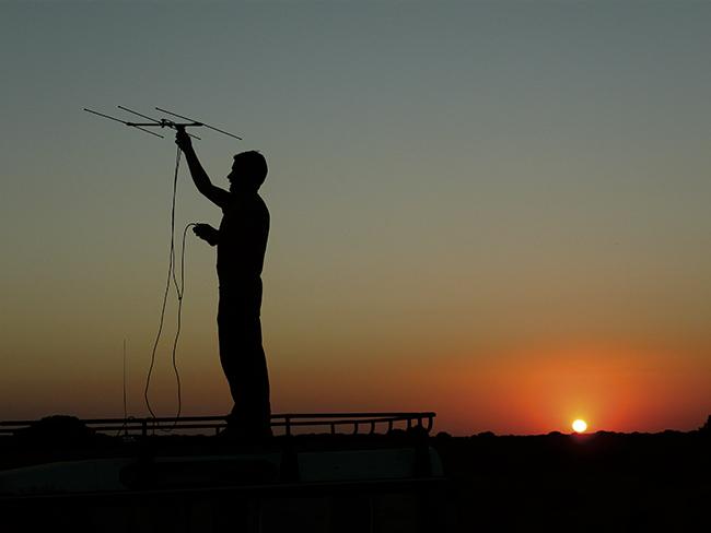 El chotacabras cuellirrojo en Doñana: un elemento conciliador entre agricultura y conservación