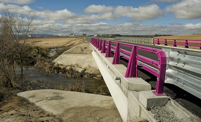 Cómo cambió la avifauna de una zona de Toledo al construirse una carretera