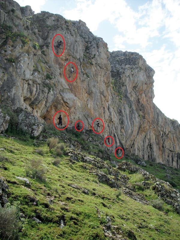 La escalada impide criar a águilas perdiceras en Loja