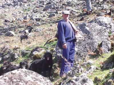Felipe, uno de los últimos cabreros de Segura de Toro, en el valle del Ambroz (Cáceres).