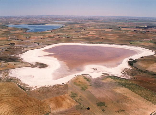 Laguna de Alcahozo, en Mota del Cuervo (Cuenca). Los terrenos que rodean este humedal hipersalino y estacional están colonizados por interesantes formaciones de plantas halófilas. En la parte superior izquierda se divisa la laguna de Manjavacas (foto: S.A.F. Juan I. Rozas).