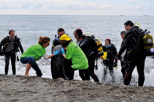 Retiradas de la costa más de cuatro toneladas de basura por buceadores voluntarios