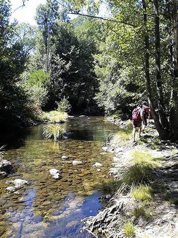 Las primeras reservas naturales fluviales españolas protegen tramos de ríos en excelente conservación. En la imagen, sector del Alto Alberche (Ávila), en la cuenca del Tajo (foto: José Antonio Montero).