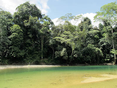 La Reserva Natural de Bladen es una de las �reas de Belice m�s valiosas y con protecci�n legal m�s estricta (foto: Sergio Rejado).