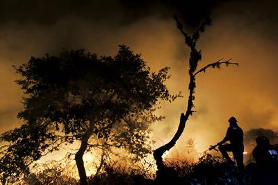 Varios bomberos intentan sofocar un incendio forestal (foto: Pedro Armestre / Greenpeace).