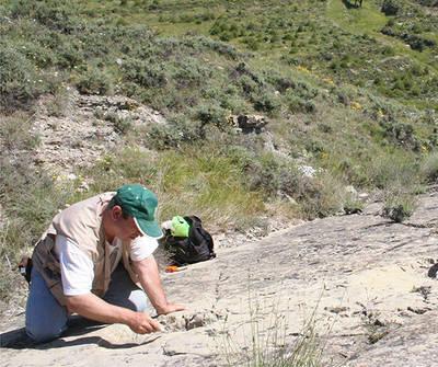 Joaqu�n Moratalla, autor de este art�culo, estudiando las icnitas de dinosaurios del yacimiento de La Magdalena (Pr�jano, La Rioja).