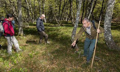 Luis Robles, coordinador de los trabajos de campo del LIFE+ Urogallo cant�brico, Muestra una zona de arandaneras del Parque Nacional de Picos de Europa donde ha actuado el proyecto.