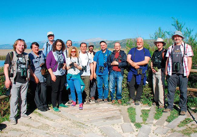 De turismo ornitológico por Alcudia