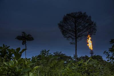 Las extracciones petrolíferas se ubican en algunos casos en el mismo corazón de la selva de Ecuador (foto: Jaime Culebras).