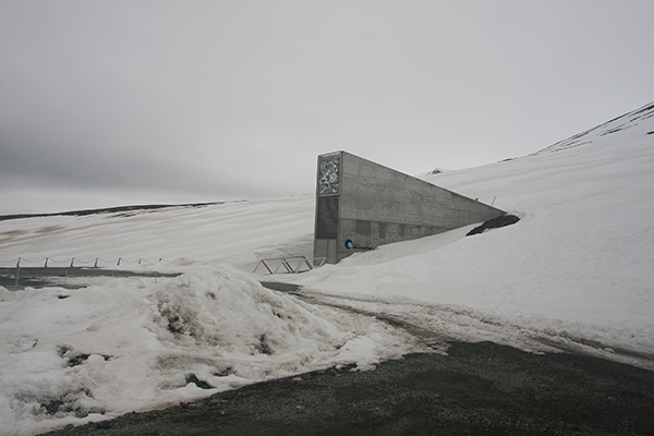 Vista exterior de la Bóveda Global de Semillas, en las islas Svalbard (Noruega). Foto: Miksu / Wikicommons.