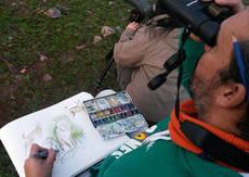 Un dibujante toma apuntes del natural de lince ibérico en Sierra Morena (foto: Francisco J. Martín).