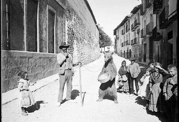 El ocaso del oso en Castilla y Aragón: dos historias diferentes