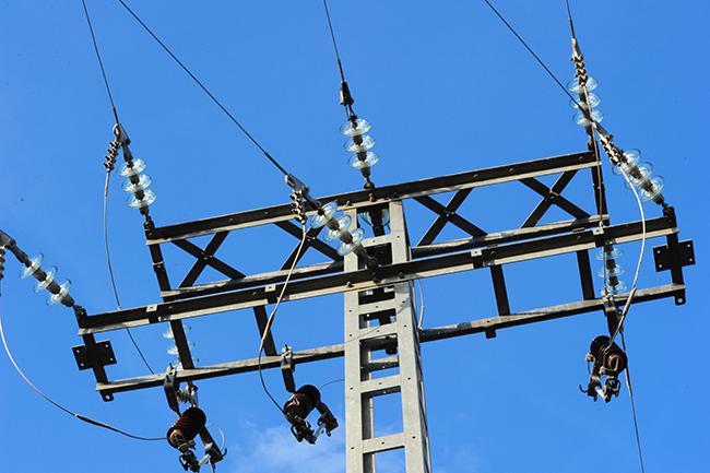 Multa de más de 700.000 euros por electrocuciones de rapaces