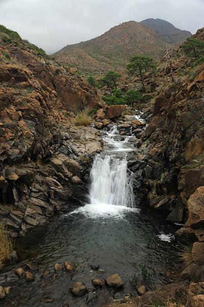 Los ríos de Sierra Bermeja presentan un estado de conservación excepcional (foto: José Aragón).