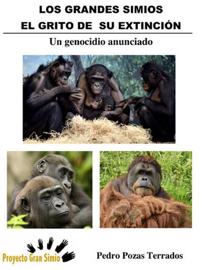 Grandes primates: ¿Cómo los estamos extinguiendo?