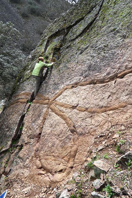 Los fósiles marinos del Parque Nacional de Cabañeros
