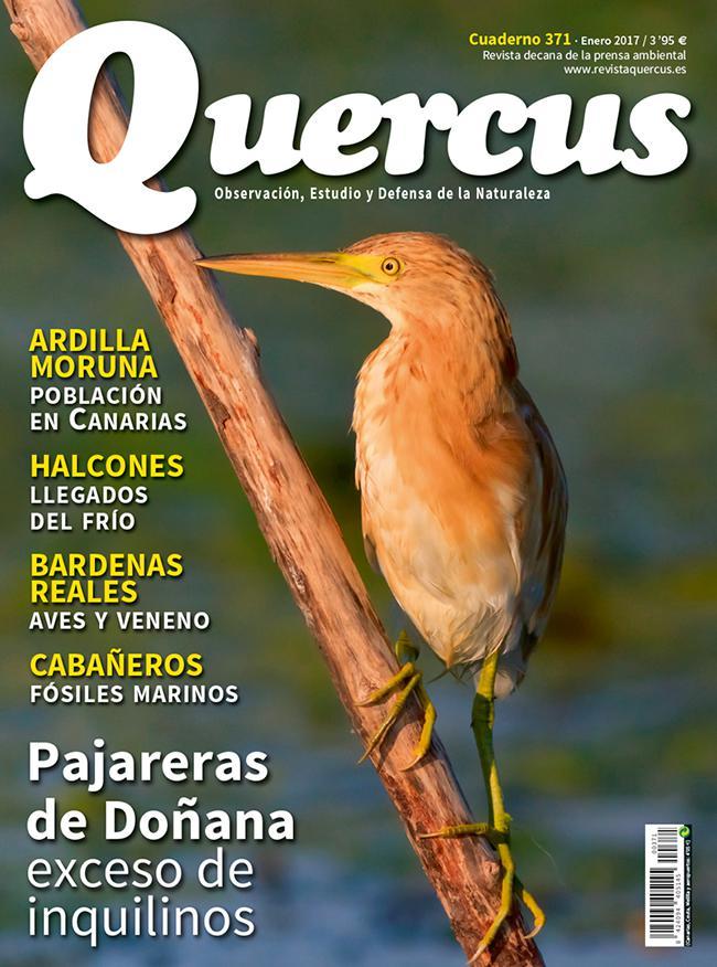 Sumario Quercus nº 371/Enero 2017