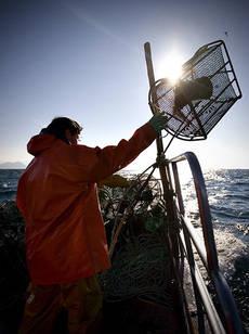 Pesca artesanal sostenible en Galicia (foto: WWF España).