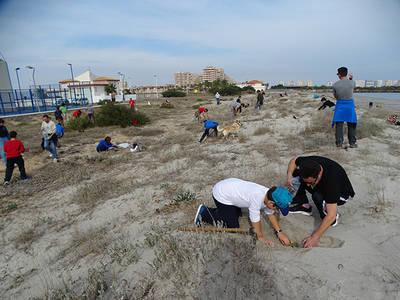 Varios voluntarios participan en una plantación de flora de dunas en la zona norte de La Manga (Murcia). Foto: Pedro García / Anse.