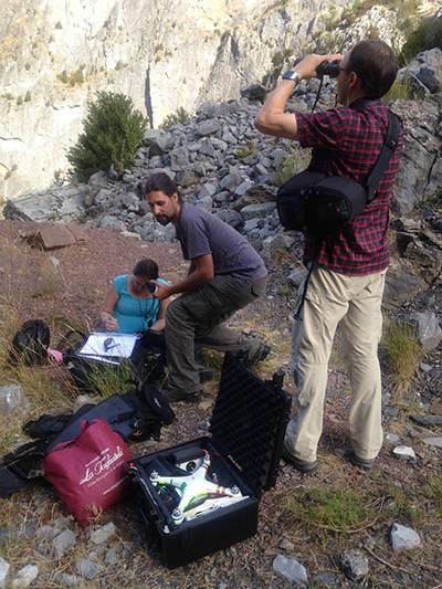 El equipo de FCQ y switch drone se dispone a echar a volar un dron para evaluar la tolerancia a este dispositivo de las rapaces carroñera (foto: Juan Antonio Gil y Francisco Martínez).
