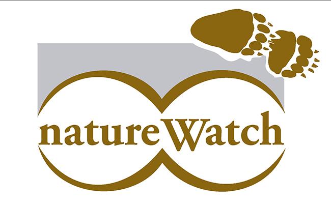 El turismo de observación de la naturaleza, en auge