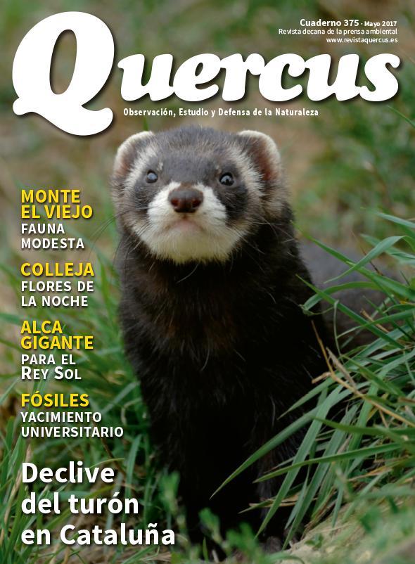 Sumario Quercus nº 375/Mayo 2017