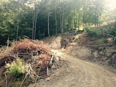 Escena que refleja el impacto en el medio natural de Aller (Asturias) de la transformación de un sendero en pista motorizada (foto: Coordinadora Ecoloxista d'Asturies).