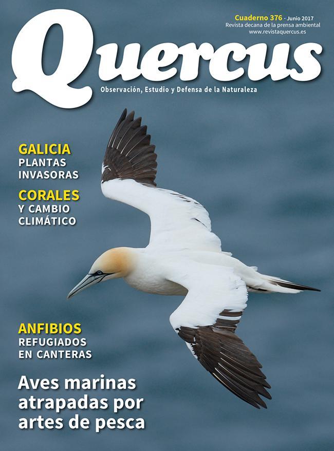 Portada Quercus nº 376/Junio 2017