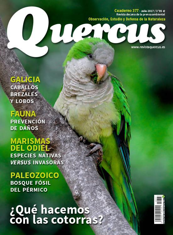 Portada Quercus nº 377 / Julio 2017