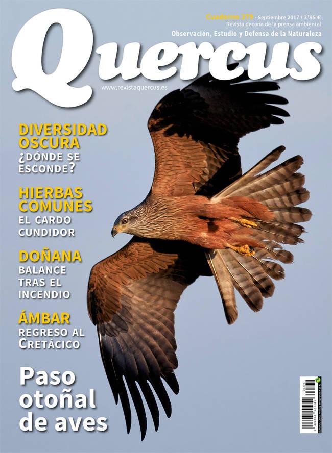 Sumario Quercus nº 379/Septiembre 2017