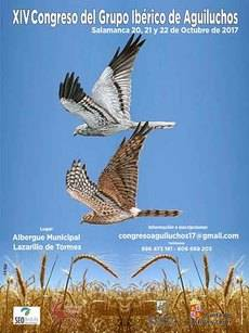Salamanca acoge un nuevo congreso ibérico sobre los aguiluchos