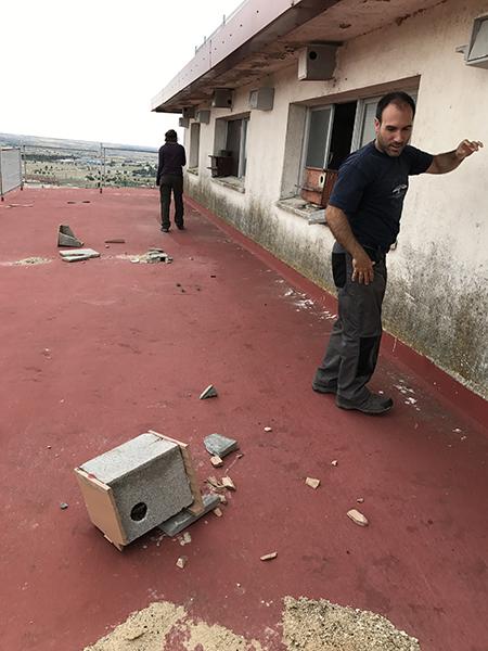 Miembros de Grefa revisan los daños causados por actos vandálicos en la colonia de cernícalo primilla existente en el silo de Navalcarnero (Madrid) en una de las terrazas del edificio. En el suelo se aprecian algunos nidales destrozados (foto: Grefa).