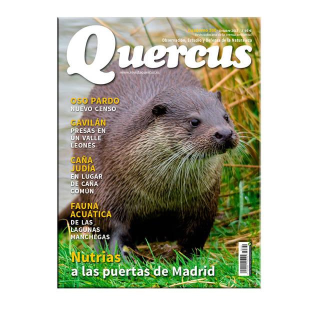 Portada Quercus nº 380/Octubre 2017