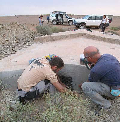 Momento de la colocación de una malla metálica en el acceso lateral de un aljibe del suroeste de Marruecos (foto: Teresa Pérez García).