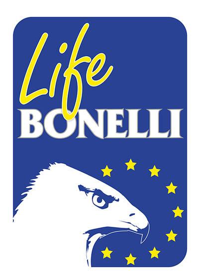 LIFE Bonelli: primer paso hacia la recuperación de una rapaz olvidada